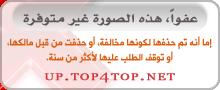 مركز تحميل Top4toP : مجلد ملفات عضو